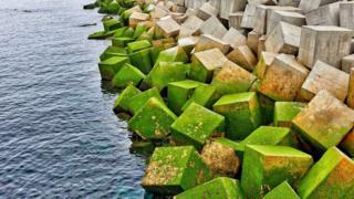 cubos de cemento al lado del mar