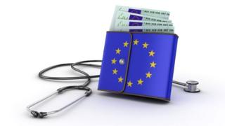 Graphic showing wallet with EU flag surrounded by stethoscope