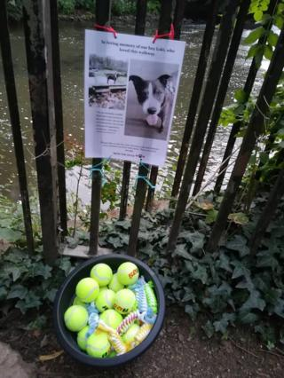 The tennis ball tribute