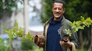 Addis tree planter