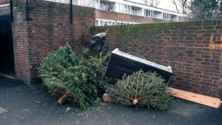 Around eight million Christmas trees are sold in the UK over the festive period