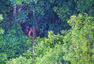 ชนเผ่าพื้นเมืองกลุ่มนี้เข้าไปหลบหลังต้นไม้ทันทีที่เห็นเฮลิคอปเตอร์บินเหนือหมู่บ้าน