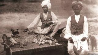 چیتے وان