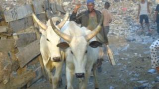 An jima ana samun rikici tsakanin fulani makiyaya da manoma a Najeriya