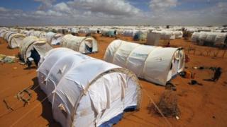 Kambi ya wakimbizi ya Dadaab