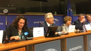Тетяна Монтян, Петро Симоненко, Тетяна Жданок під час зустрічі у Європарламенті