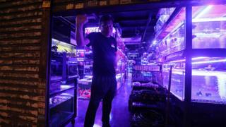 香港九龍旺角通菜街一名觀賞魚店店員把鐵閘落下(17/8/2019)