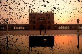 Birds fly over the corridor of the Jama Masjid at sunrise in New Delhi on 27 October 2016.