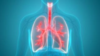 العثور على أنسجة دهنية في رئة أشخاص يعانون السِمنة