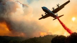 Un avión arroja retardante de fuego en una cresta durante el incendio de Walbridge en California el 20 de agosto de 2020.