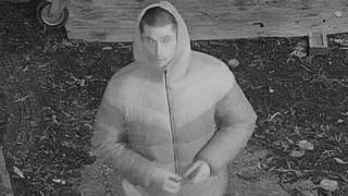 Ickenham sex assault suspect