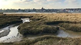 Sal marshes in Maldon, Essex