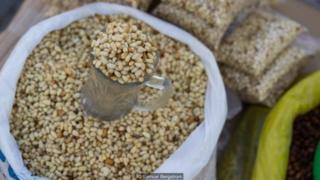 Hạt thông giúp cân bằng chế độ ăn uống nhiều thịt của người Tsaatan.