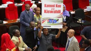Tanzania kamusi kuu