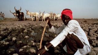 Les autorités sont intervenues, réunissant éleveurs et agriculteurs pour une tentative de réconciliation.