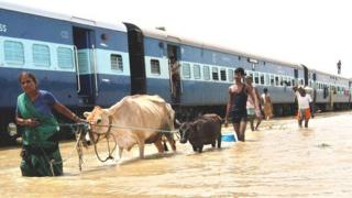 Family transporting their belongings and cattle through floodwater, India (Image: AP)
