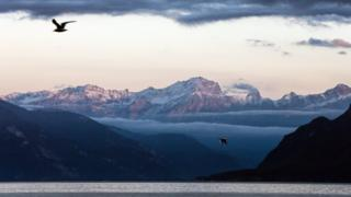 mountains_lake_and_birds_flying