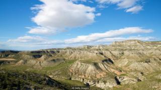 Terdapat sejumlah upaya untuk mengembalikan vegetasi, bahkan di kawasan tandus seperti di pedalaman Spanyol