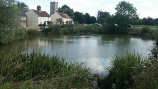 Mulbarton church and pond near the Common