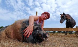 Valerie Luycx is seen with Pastis a 10-year-old Vietnamese pig