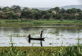The upper reaches of the White Nile in Uganda
