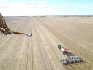 An eagle swoops at a drone camera flying above a grain farm in Australia