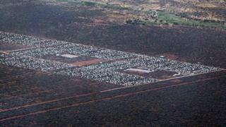 Inkambi y'impunzi ya Dadaab muri Kenya, ivugwa ko ariyo ya mbere nini kw'isi
