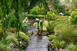 Volunteers tidy the stream that runs through the heather collection