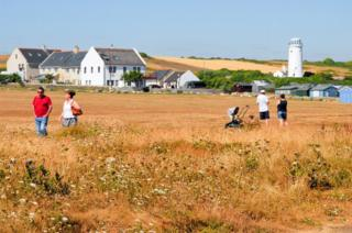 The continuing heatwave has turned the grass brown at Portland Bill.