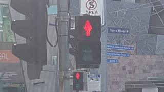 The new pedestrian signals on display in Melbourne (7 March 2017)