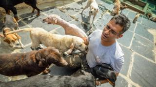 Rakesh Shukla with some of his dogs