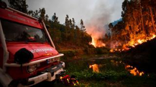 Firefighter resting amid forest fire near Coimbra, June 2017