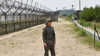 المنطقة الخالية من السلاح والتي تقسم الكوريتين