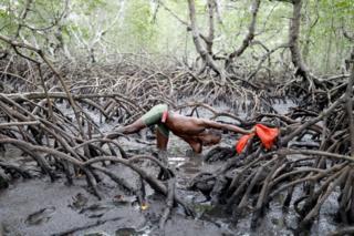 Fisherman Jose da Cruz reaching into mud to catch crabs