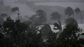 Циклон привел к падению деревьев и ливням