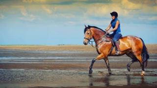 Thomas the horse