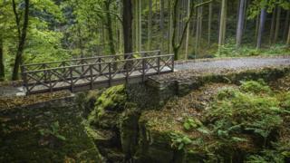The newly-restored bridge at the Hafod Estate