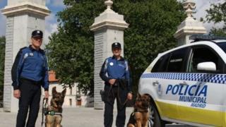 كلاب الشرطة في بلدية مدريد