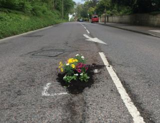 Flowers planted in potholes
