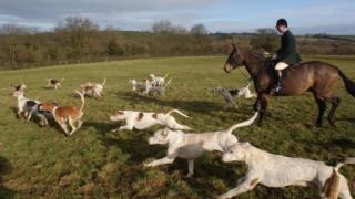 Huntsman and hounds in Oxfordshire