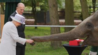 The Queen and Prince Philip feeding an element at Whipsnade Zoo