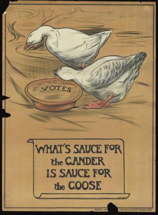 Два гуся едят одинаковыю пищу