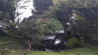 Car crashed in garden