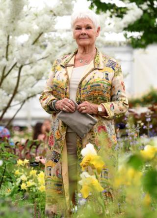 Judi Dench at Chelsea Flower Show