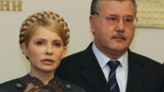 Юлія Тимошенко та Анатолій Гриценко - давні соратники у політиці