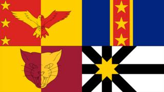 Flags in vote