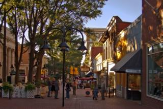 Charlottesville's downtown pedestrian mall, on a recent summer day