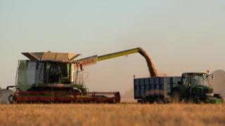 Combine harvester and truck