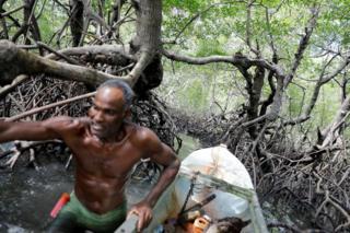 Fisherman Jose da Cruz on his boat in a mangrove forest