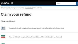 Bogus mock-up of government website